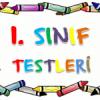 1. SINIF TÜRKÇE TESTİ 3